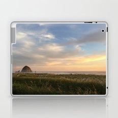 The Haystack Laptop & iPad Skin