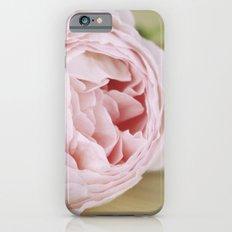 Early Roses iPhone 6 Slim Case