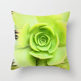 Pouring Paint Succulent Throw Pillow