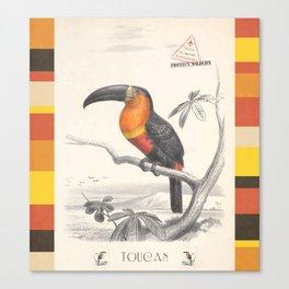 Toucan Bird Responsible Travel Art Canvas Print