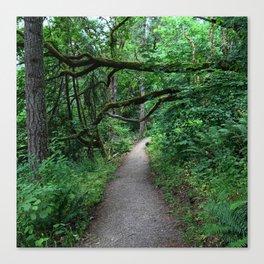 Hiking Mount Pisgah Canvas Print
