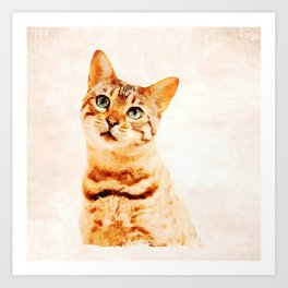 "Sad Kitten saying ""I'm Sorry..."" Art Print"