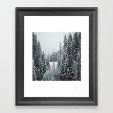 Snow Forest Framed Art Print