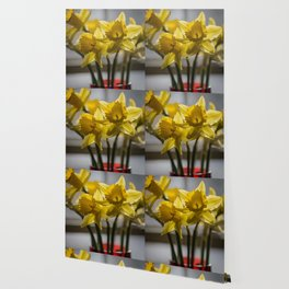 Daffodils in Red Crystal vase from my photography collection Wallpaper