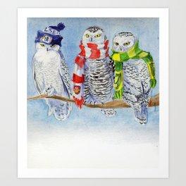 Football Owl Art Print