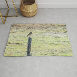 Burrowing owl Rug