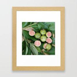 FRUITS & LEAVES Framed Art Print