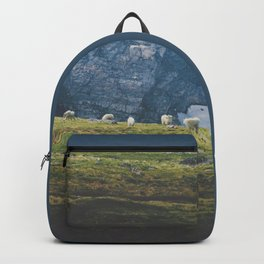 Beartooth Mountain Goats Backpack