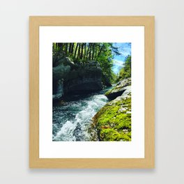 Vermont is Gorges Framed Art Print