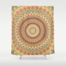 Mandala 467 Shower Curtain