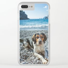 dog on the beach Clear iPhone Case