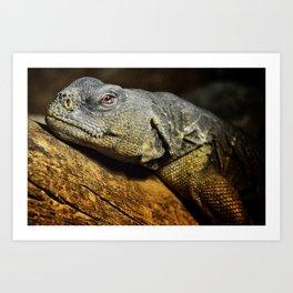 Dragon Lizard Art Print