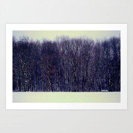 Winter Silence Art Print