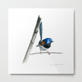 Fairy Wren by Teresa Thompson Metal Print