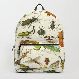 Bugs  Backpack