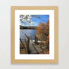 Autumn 1 Framed Art Print