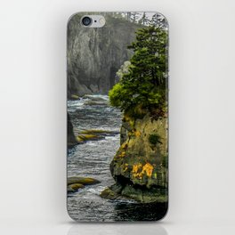 Cape Flattery, Olympic Peninsula, Washington iPhone Skin