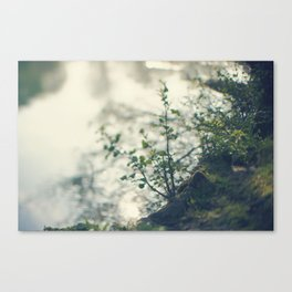 Walking by the riverside (8) Canvas Print