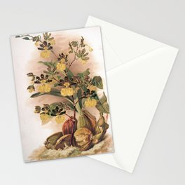 Vintage Orchid Print - Reichenbachia (1894) - Oncidium tigrinum Stationery Cards