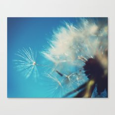 Dandelion Photograph Canvas Print