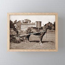 Child Farmer On A Horse Drawn Hay Rake - 1915 Framed Mini Art Print