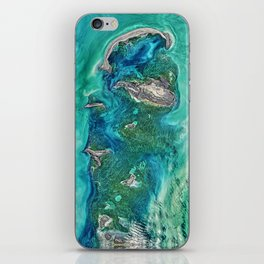 Ice Scours the North Caspian Sea iPhone Skin