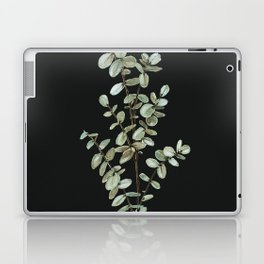 Baby Blue Eucalyptus Watercolor Painting on Charcoal Laptop & iPad Skin