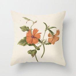 M. de Gijselaar - Yellow Chinese rose (1820) Throw Pillow