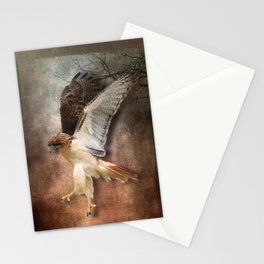 Red Tail Hawk in Vintage Light Stationery Cards