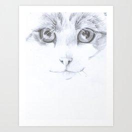 Teti Art Print
