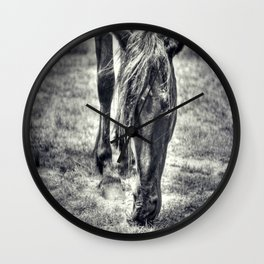 Outer Banks, Corolla, NC, Wild Stallion OBX Wall Clock