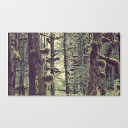 Branching Out   Forest Photograph Canvas Print
