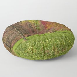 Lonely Bails of Color Floor Pillow
