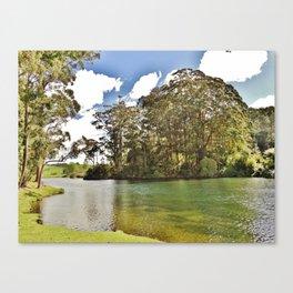 Tauranga Canvas Print