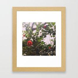 INTERLUDE (2016) Framed Art Print