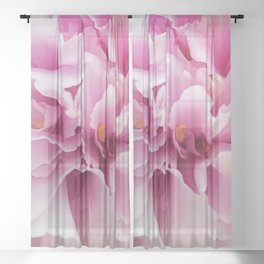Spring Pink Bloom Sheer Curtain