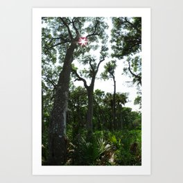 Vertical Panorama  Art Print