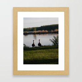 feathered friends 2 Framed Art Print