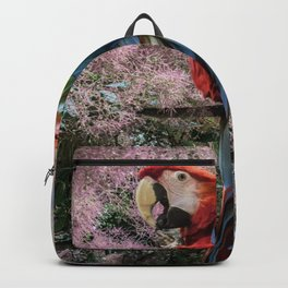 Red macaw parrot ara Backpack