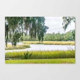 By the Bayou Canvas Print