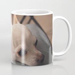 Lap Dog Chihuahua Coffee Mug
