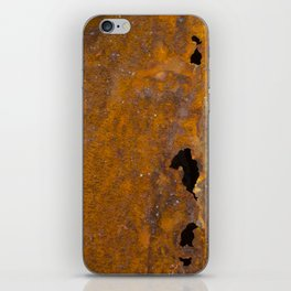 Holy Rusted Metal iPhone Skin