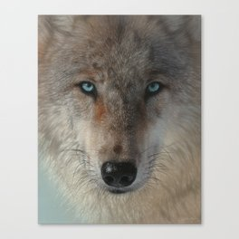 Inner Wolf Pack Canvas Print
