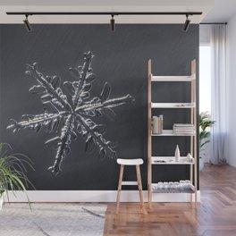 January Snowflake #2 Wall Mural