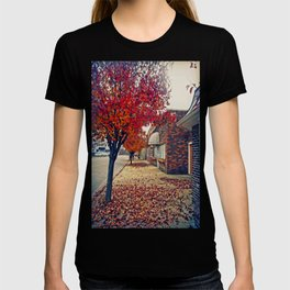 Autumn in Downtown Ironton T-shirt