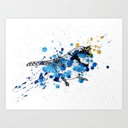 Splattered Blue jay Art Print