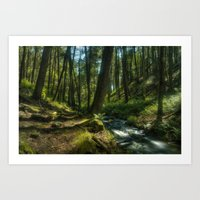 forrest Art Prints featuring Forrest by Jordan Weinrich