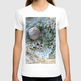 Nacre rock with sea snail T-shirt