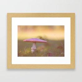 Fly agaric mushroom Framed Art Print