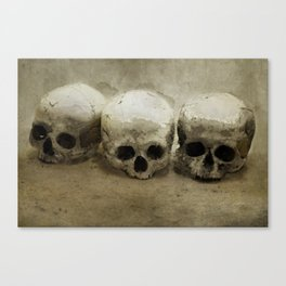 Three skulls Canvas Print